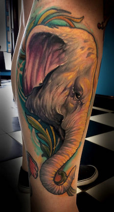 Color realism elephant